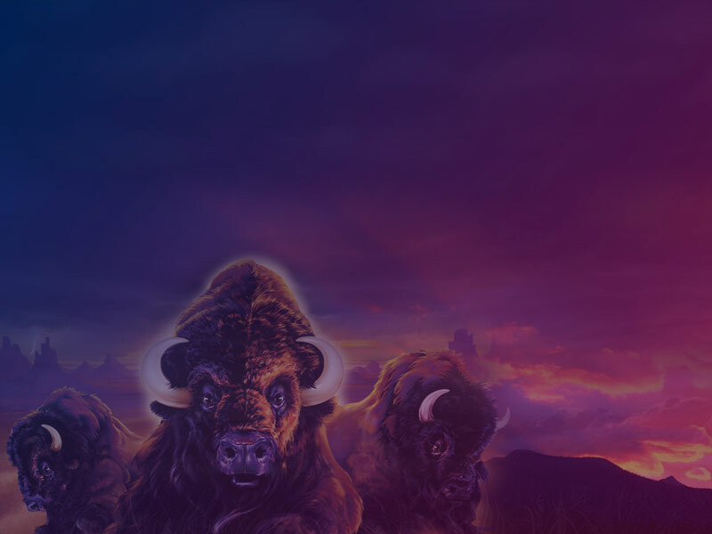 Free Buffalo Slots – Game Review